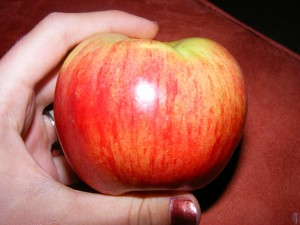 7 apple 300x225 More eats for 9/20/2008 and a new site!