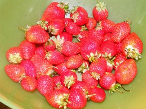6 strawberries 300x225 Just another lazy Sunday...