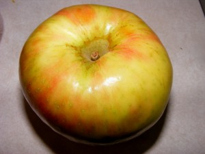 10 honeycrisp 300x225 Short week!