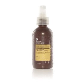 toner Planet Friendly Beauty Products   Pangea Organics