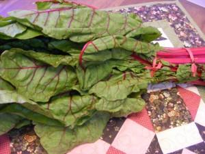 15 rhubarb