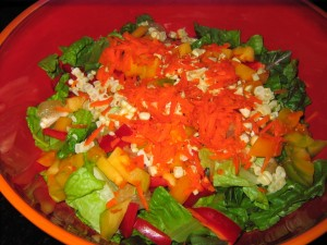41 cousin salad 300x225 Raw Cheese? In a salad its all good...