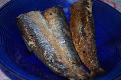 sardines 400x266 How to Cook Sardines