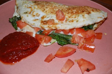 02 tomato green omelette ketchup 450x2981 Homemade Ketchup Fun & Natures Pride Bread