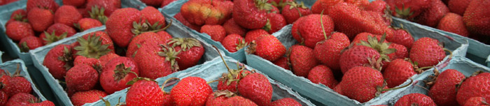 strawberries farmers market Seasonal Organizing