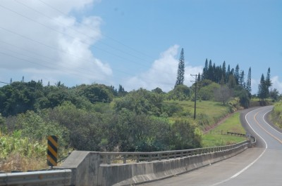 01 road to hana 400x265 Marriage Advice & Maui Fruit Stand {Honeymoon}