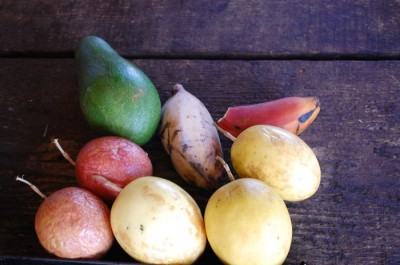 08 passionfruit bananas hana 400x265 Marriage Advice & Maui Fruit Stand {Honeymoon}