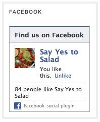 saladfacebook 3 Essential Blog Branding Tips