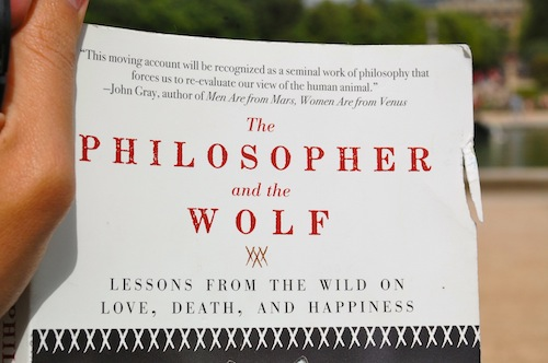 18 philosopher and the wolf Five Things Friday   from France!