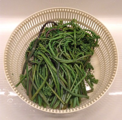 IMG 0004 400x395 {Macrobiotic March Recipe} Sauteed Sesame Fern Bracken / Fiddlehead Ferns