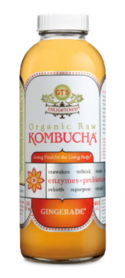 kombucha 180x400 A Day in the Life {Blog Every Day in May}
