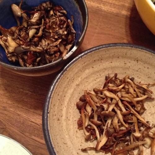 japanese maitake mushrooms beech 500x500 Foraged Chanterelles (Mushrooms)
